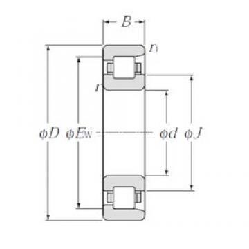 105 mm x 190 mm x 36 mm  NTN NF221 Rolamentos cilíndricos