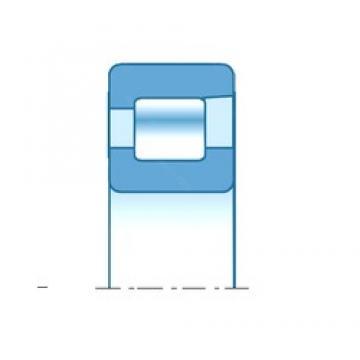 30,000 mm x 62,000 mm x 16,000 mm  NTN NF206E Rolamentos cilíndricos