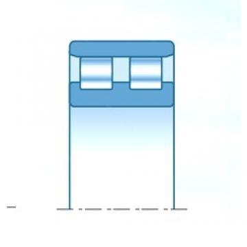 45 mm x 75 mm x 23 mm  NTN NN3009C1NAP4 Rolamentos cilíndricos
