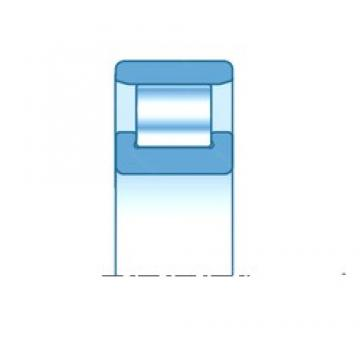90,000 mm x 190,000 mm x 43,000 mm  NTN N318E Rolamentos cilíndricos