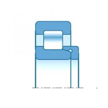 80,000 mm x 170,000 mm x 50,000 mm  NTN NH316 Rolamentos cilíndricos